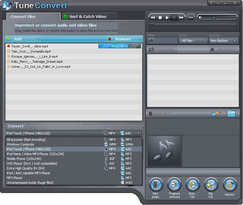 TuneConvert conversion format